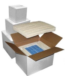 Biodegradable Insulated Shippers