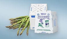 Asparagus-Box